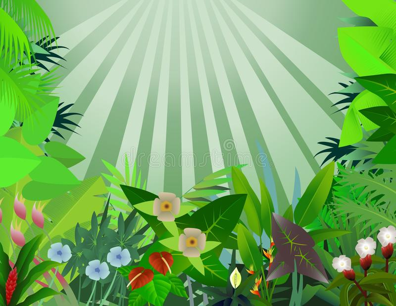 Download Beautiful Forest Background Stock Vector - Image: 23270691