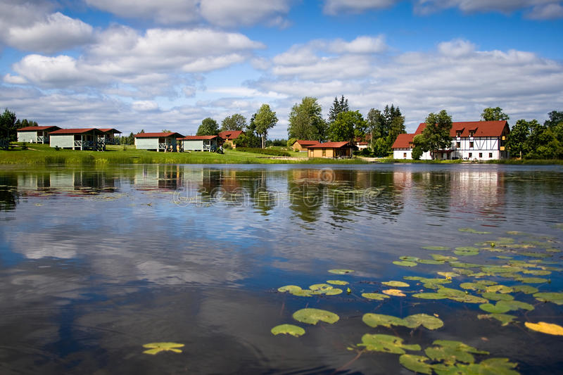 Beautiful forest lake with water lilies on surface royalty free stock images