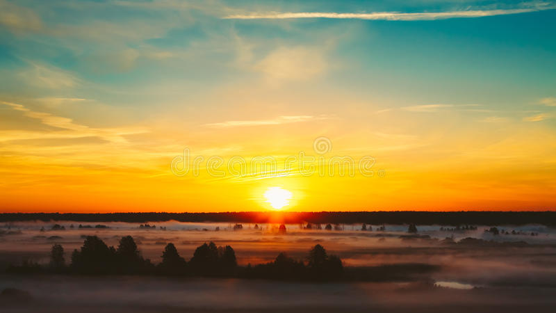 Beautiful Forest On Sunrise. Morning Fog On Meadow royalty free stock photo
