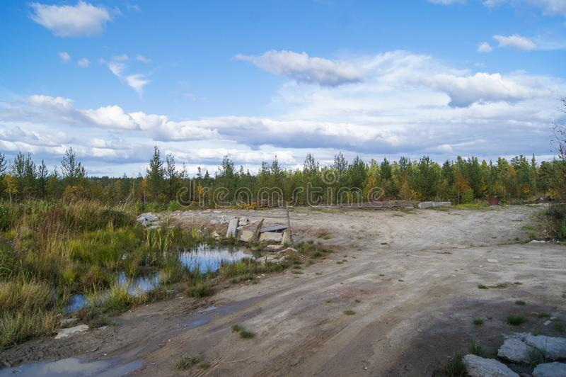 Beautiful Forest Surgut Russia 06.09.2015 stock photo