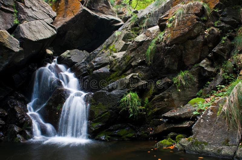 Download Beautiful forest waterfall stock photo. Image of wallpaper - 11220866