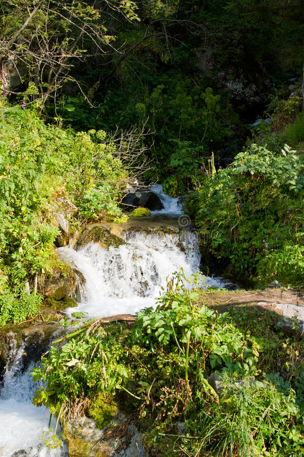 Download Beautiful  Forest And Waterfall In The  Kazakhstan Stock Image - Image: 21244141