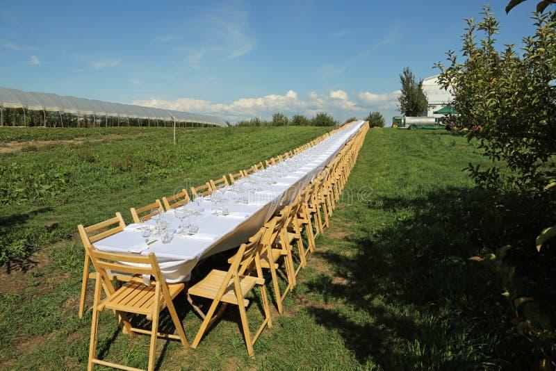 Download Beautiful formal table stock photo. Image of elegant - 26302848