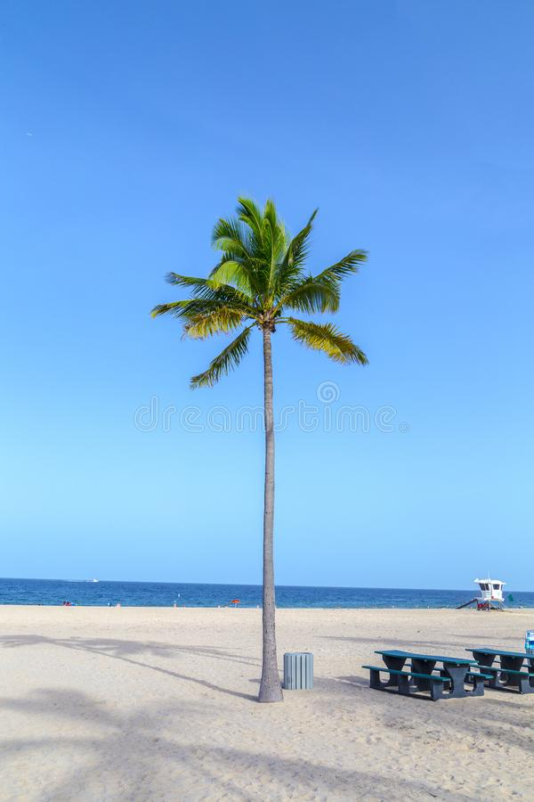 Beautiful Fort Lauderdale beach stock image