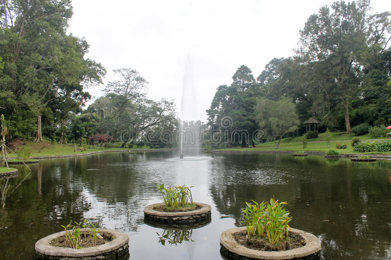 Beautiful fountain in lake : Cibodas botanical garden in Puncak royalty free stock photo