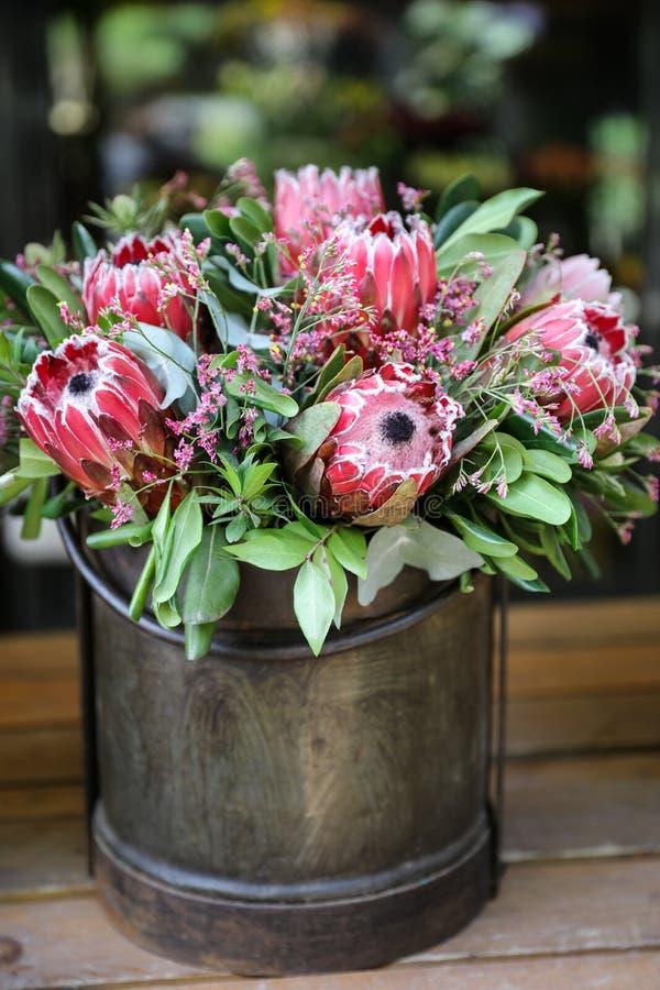 Beautiful fresh flower arrangement of Protea macrocephala flowers. royalty free stock photography