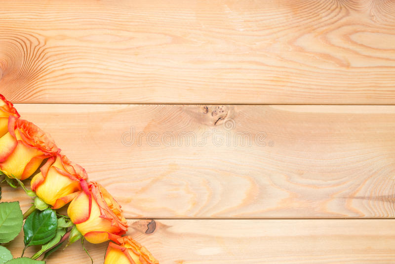 Beautiful fresh roses on a wooden background in the corner royalty free stock images