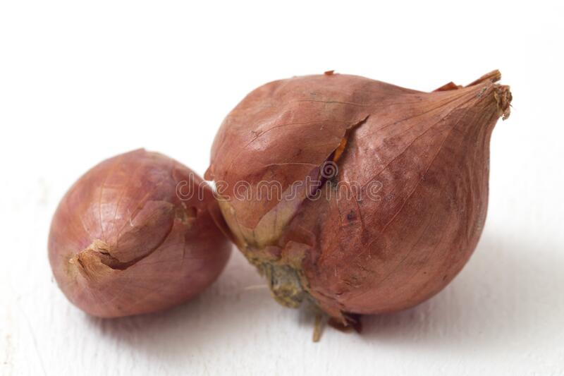 Fresh shallots isolated on white. Beautiful Fresh shallots isolated on white background stock photos