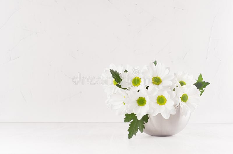 Beautiful fresh spring white gerberas with yellow eyes in silver modern vase in modern soft light white interior. royalty free stock images
