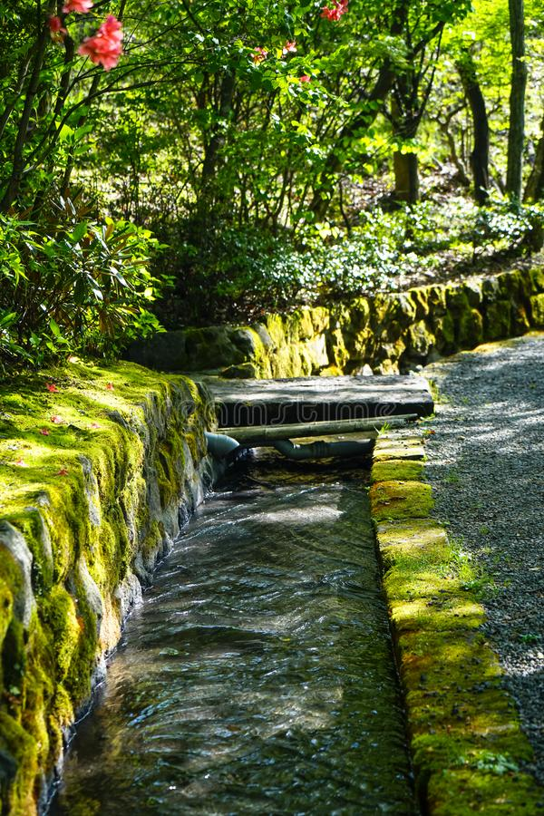 Beautiful fresh water canal ditch or natural gutter cover with green moss and lichen along pleasant road with sun shaded stock photo