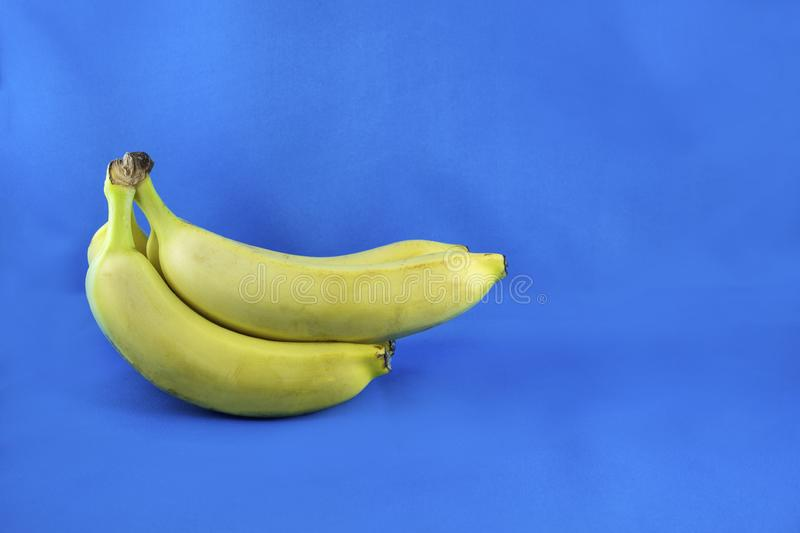 Beautiful, fresh, yellow bananas on the blue background. Healthy sweet food concept. Mock up for fruits offers as advertising or stock photo