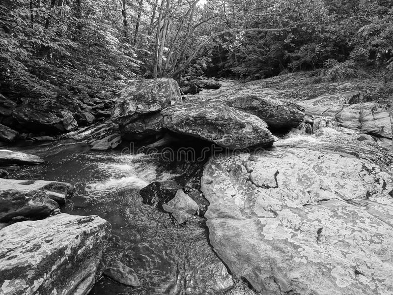 Beautiful Friend's Creek in Maryland royalty free stock photos