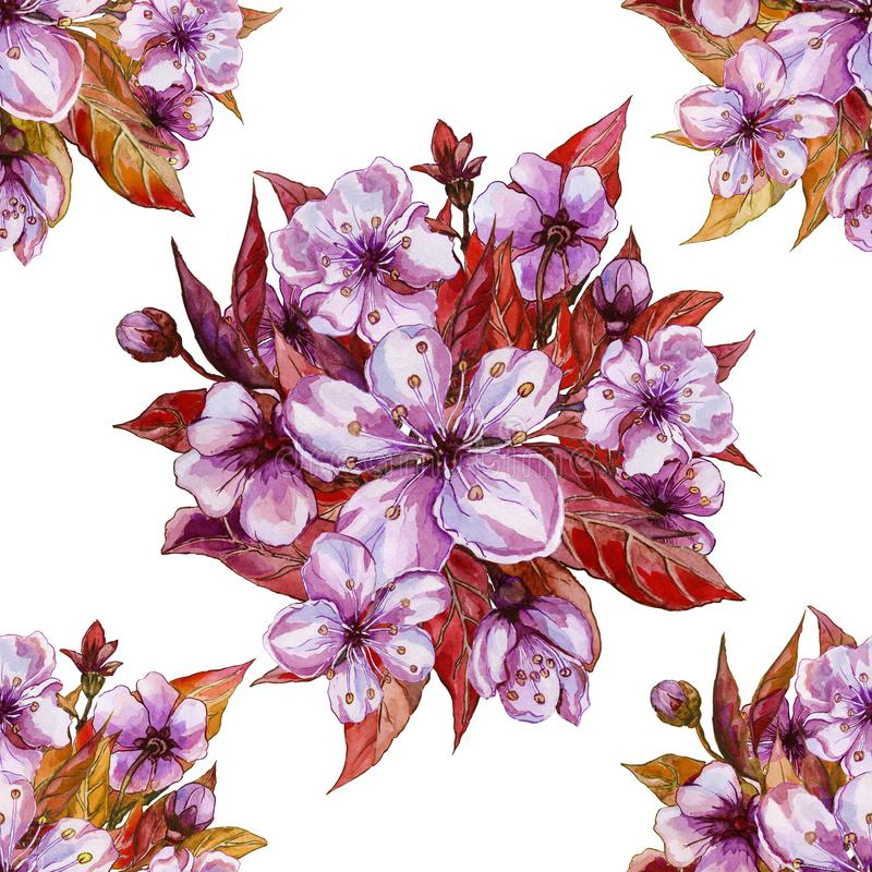 Beautiful fruit tree flowers in round bunches on white background. Spring blossom. Seamless floral pattern. Watercolor painting. stock illustration