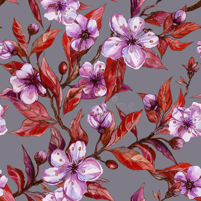 Beautiful fruit tree twigs in bloom on gray background. Lilac flowers and red leaves. Spring blossom. Seamless floral pattern. royalty free illustration
