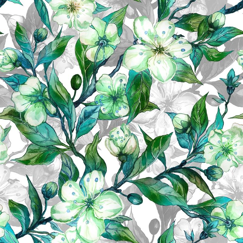 Beautiful fruit tree twigs in bloom. White and green flowers with outlines on white background. Seamless spring floral pattern. Watercolor painting. Hand drawn stock illustration