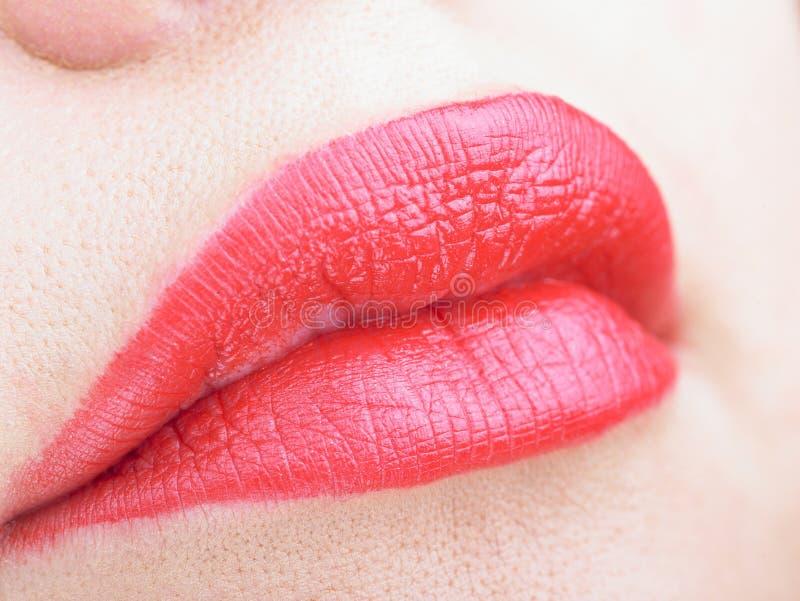 Beautiful Full Red Lips stock image