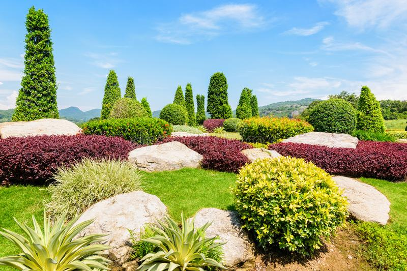 Beautiful garden stock images