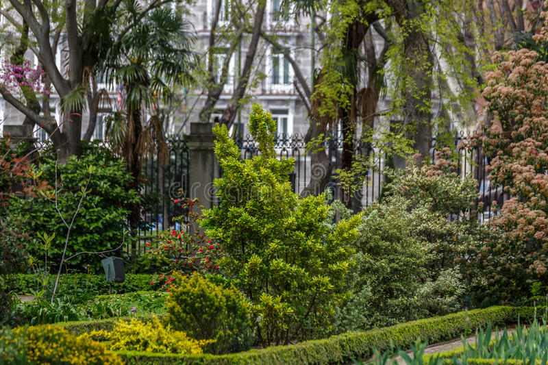 Beautiful garden in the middle of a city. Beautiful and leafy garden in the middle of a city royalty free stock photo