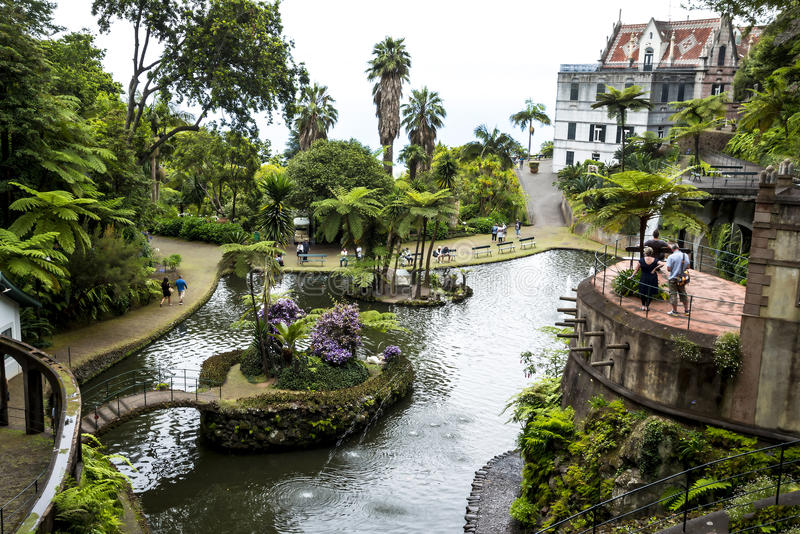 Beautiful Garden at Monte above Funchal Madeira. This wonderful garden is at the top of the cablecar from the seafront in Funchal. It is filled with trees royalty free stock images