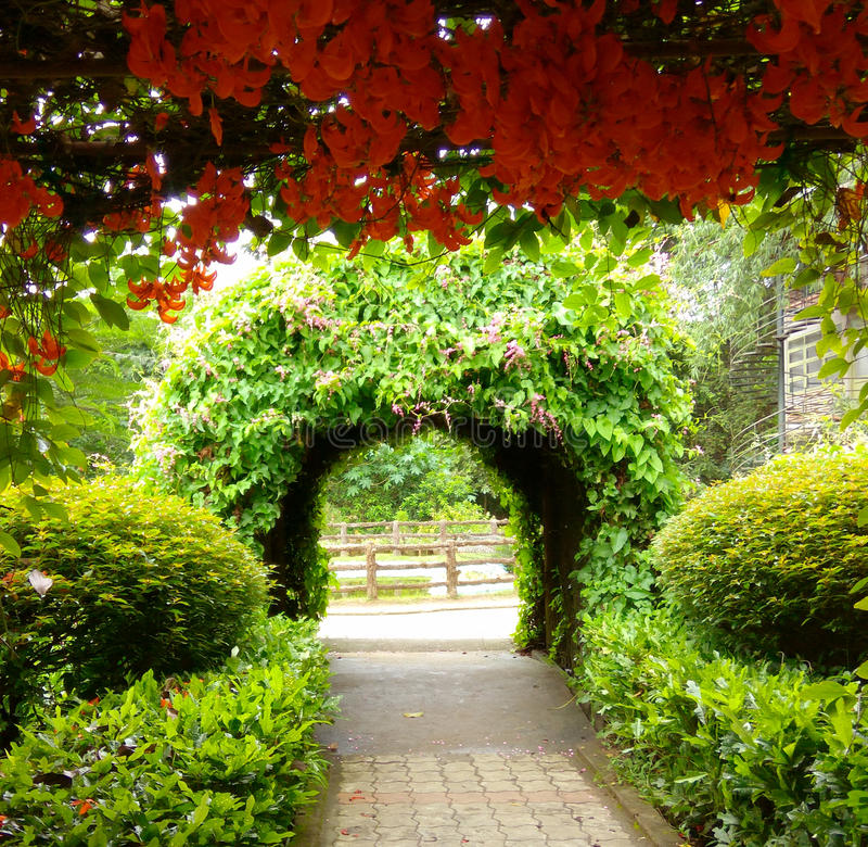 Garden path and flowers royalty free stock image