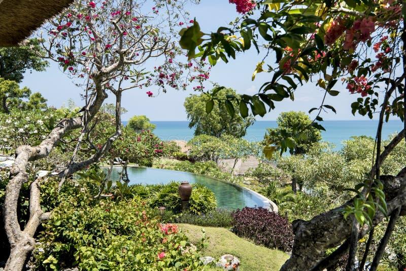 Beautiful garden with pool of Resort, Bali stock photography