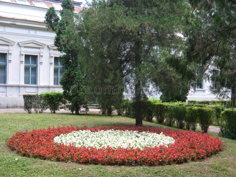 Garden, Flowers, Red, White, Old school, Spa, Town, Sokobanja, Serbia. Beautiful garden with red and white flowers infront of old school in centar of spa town of stock images