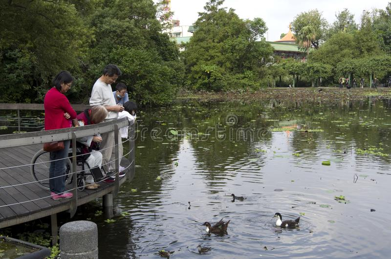 Families visiting Botanical garden Taipei taiwan. It is a beautiful garden with tropical plants and Chinese architecture. A lot of people were relaxing there on royalty free stock images