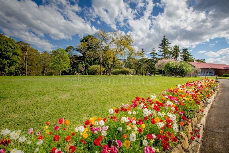Beautiful garden stock images