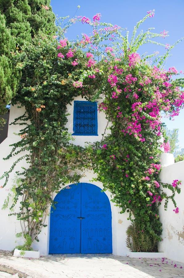Free Beautiful Gate Of Sidi Bou Said Royalty Free Stock Image - 6373806