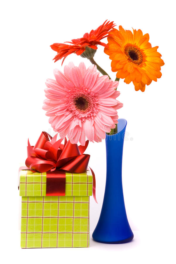 Beautiful gerber flowers in blue vase stock image