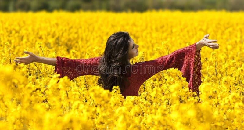 Beautiful girl in canola field stock photo