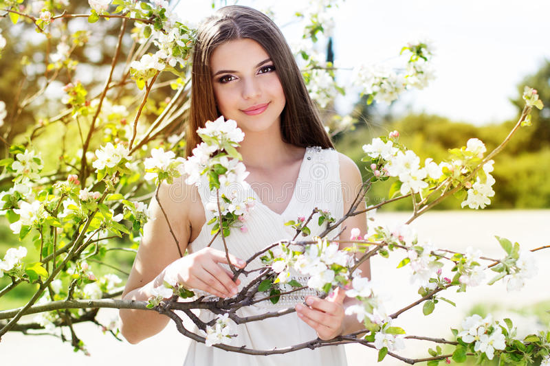 Beautiful girl in a cherry blossom garden. Portrait of beautiful smiling girl near blossom cherry tree brunch in spring garden stock photo