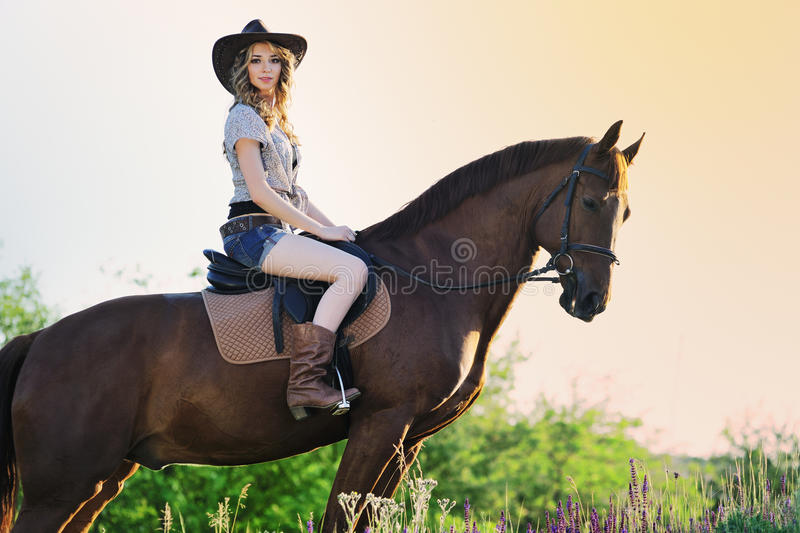 Beautiful girl with chestnut horse in evening field royalty free stock images