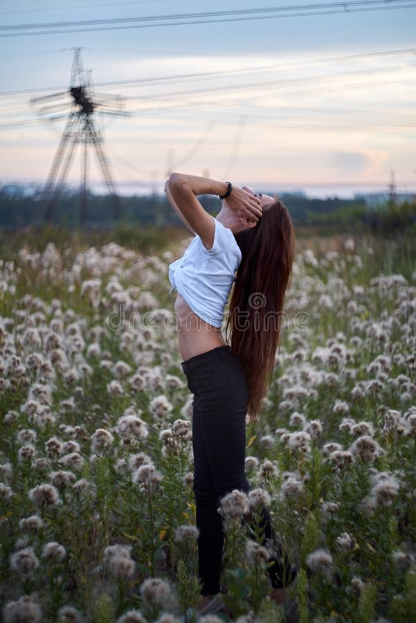 Beautiful girl on the daisy flowers field. Hands up. Late time stock image