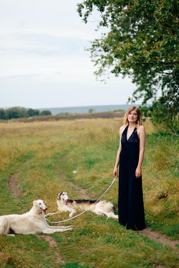 Beautiful girl in a dress on nature with Russian greyhound dogs 1. Beautiful girl in a dress on nature with Russian greyhound dogs stock photos
