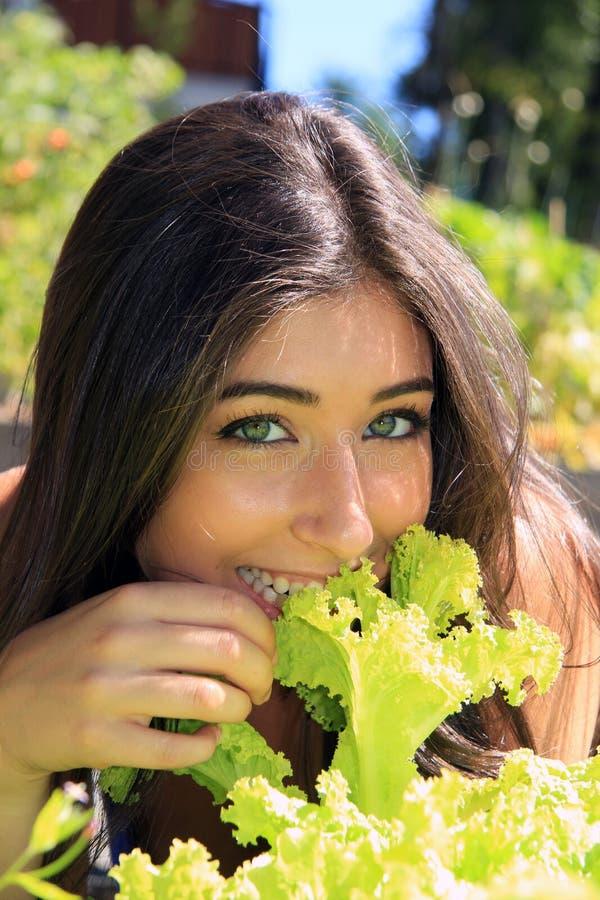 Beautiful girl eating lettuce stock images