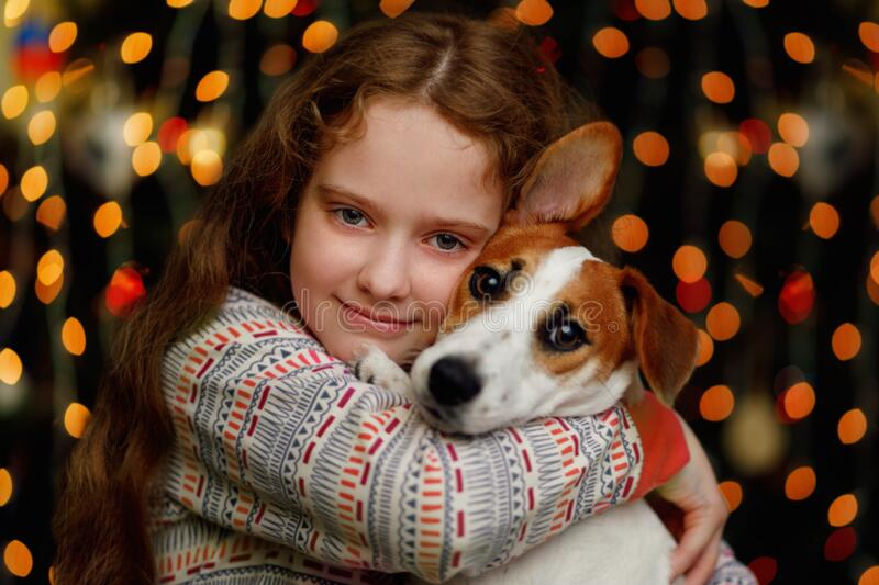 Beautiful girl embracing his puppy friend sitting near christmas tree with defocused light stock images