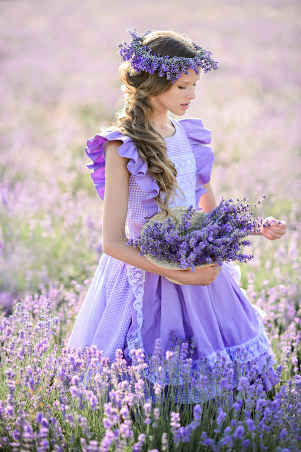 Beautiful girl in a field of lavender on sunset. royalty free stock photos
