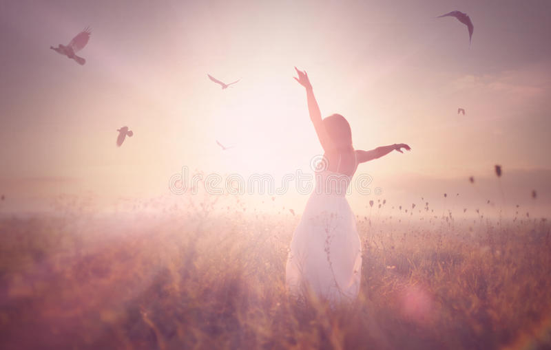 Beautiful girl in a field at sunrise stock images