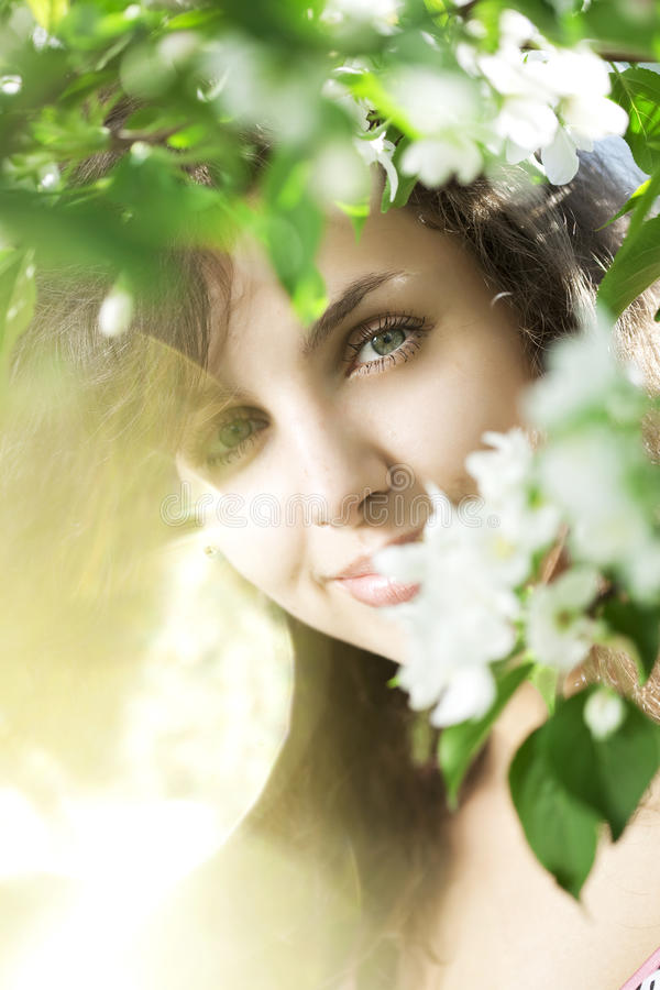 Beautiful girl in the flowered garden. The image of a beautiful girl in the flowered garden royalty free stock image