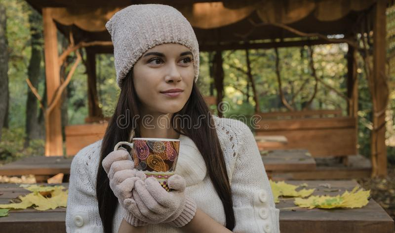 Beautiful girl in hat and gloves stock photo