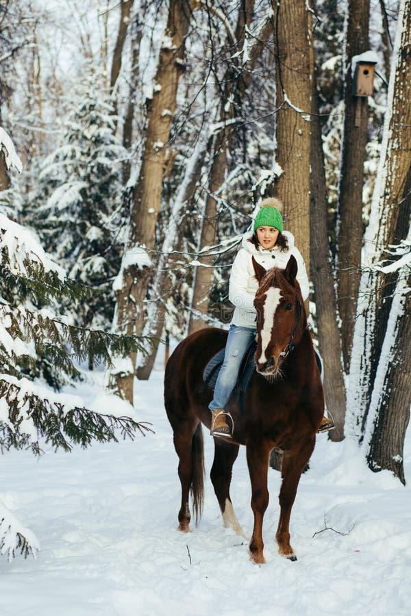 Beautiful girl and horse in winter. Beautiful girl and horse in the winter forest royalty free stock photo