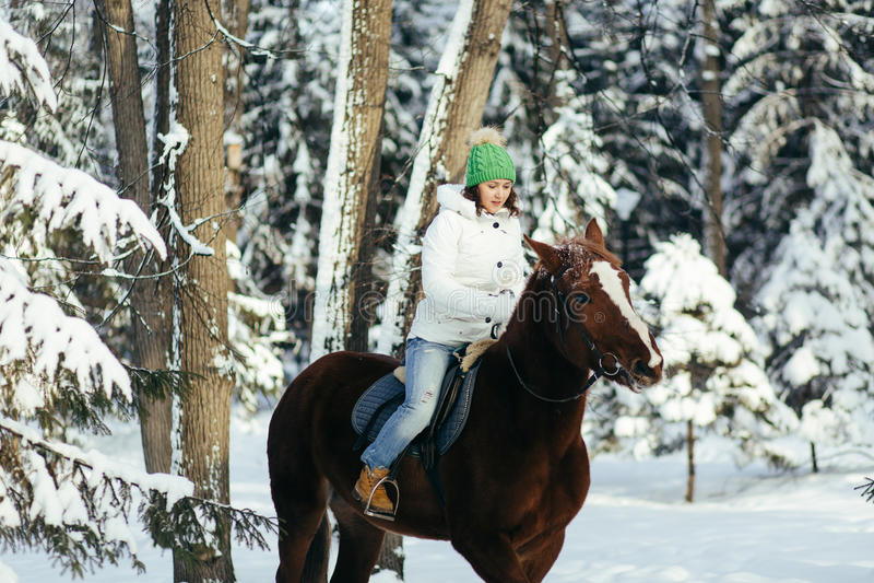 Beautiful girl and horse in winter. Beautiful girl and horse in the winter forest stock photo