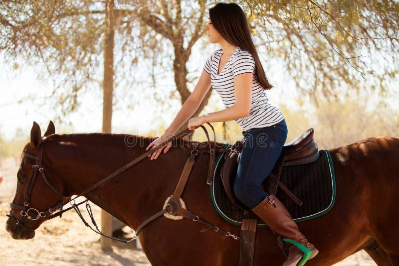 Beautiful girl horseback riding stock photos