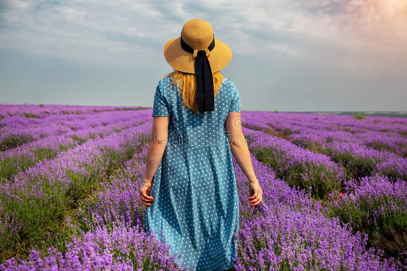 Beautiful girl in a lavender field. Girl walking in the field. Moldova royalty free stock images