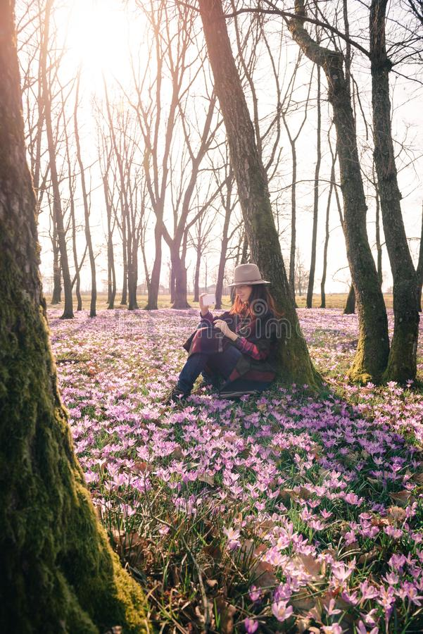 Spring.Sun.Blossoming crocuses in forest and a female traveler. Beautiful girl with long hair in a hat and colorful poncho, matching purple flowers around stock photos