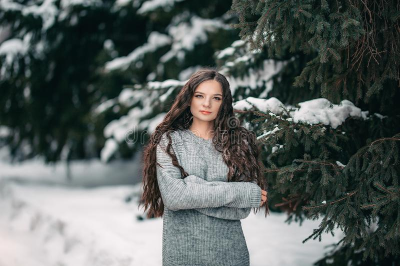 beautiful girl long hair winter close up portrait royalty free stock images