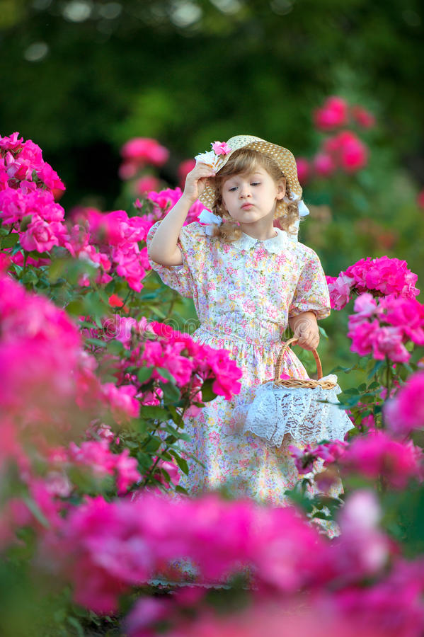 Beautiful girl on a meadow with roses looks into flowers. The beautiful girl on a meadow with roses looks into flowers stock photos