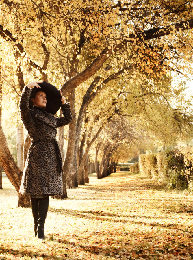 Beautiful girl in park. Portrait beautiful women in park in the autumn royalty free stock image
