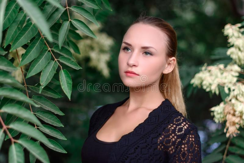 Beautiful girl in the Park royalty free stock photography